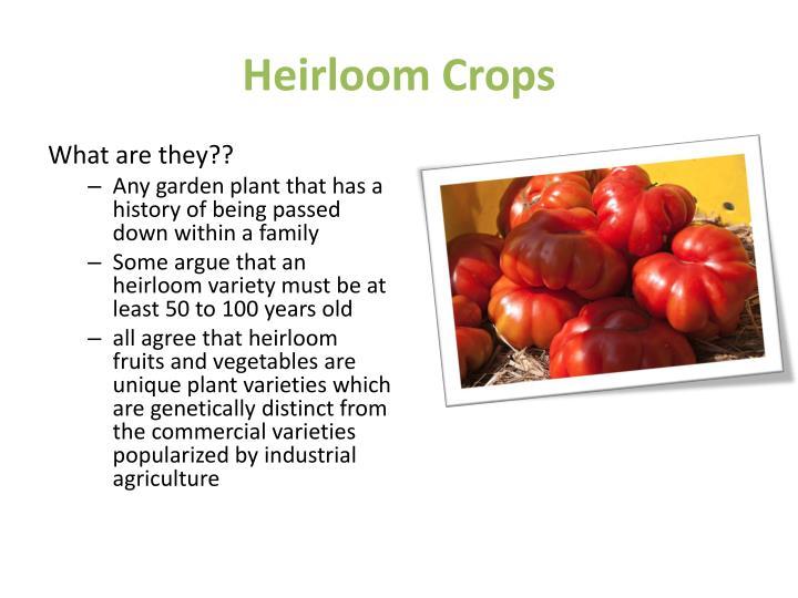 Heirloom Crops