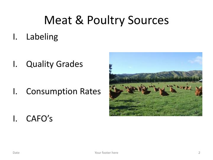 Meat poultry sources