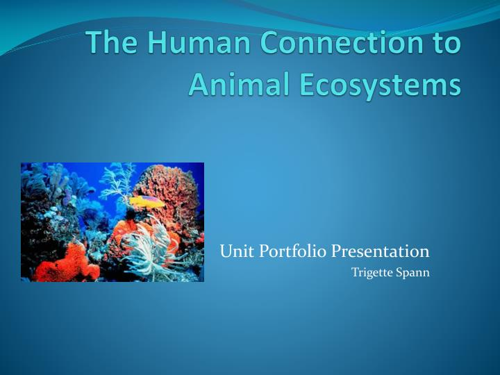 The human connection to animal ecosystems