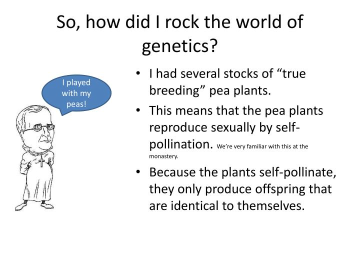 So how did i rock the world of genetics