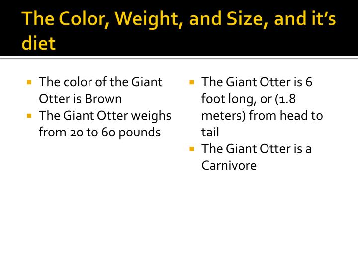 The color weight and size and it s diet