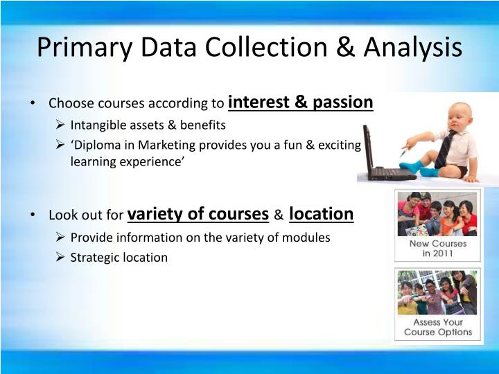 Primary Data Collection & Analysis
