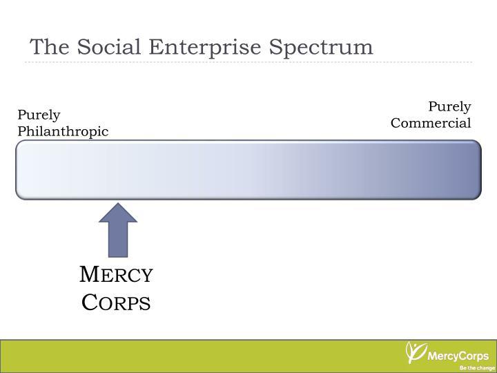 The Social Enterprise Spectrum