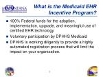 what is the medicaid ehr incentive program