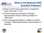 what is the medicaid ehr incentive program1