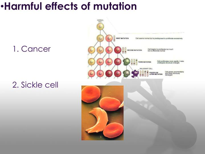 Harmful effects of mutation