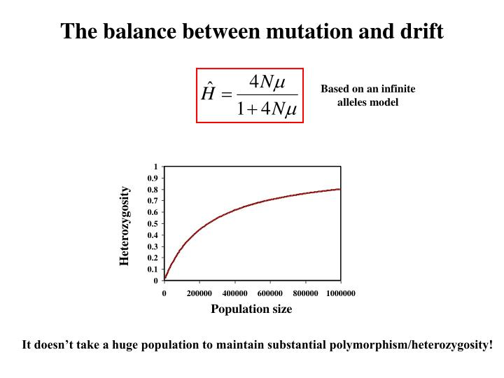 The balance between mutation and drift