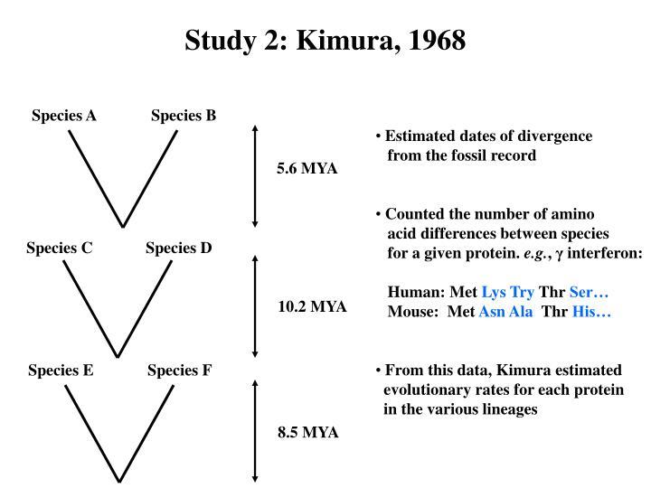 Study 2: Kimura, 1968