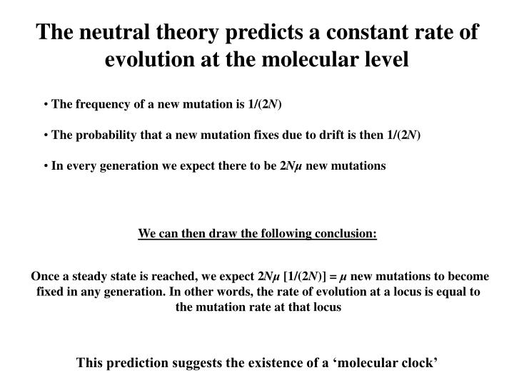The neutral theory predicts a constant rate of