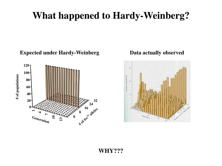 What happened to Hardy-Weinberg?
