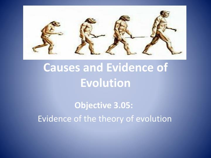 causes and evidence of evolution n.