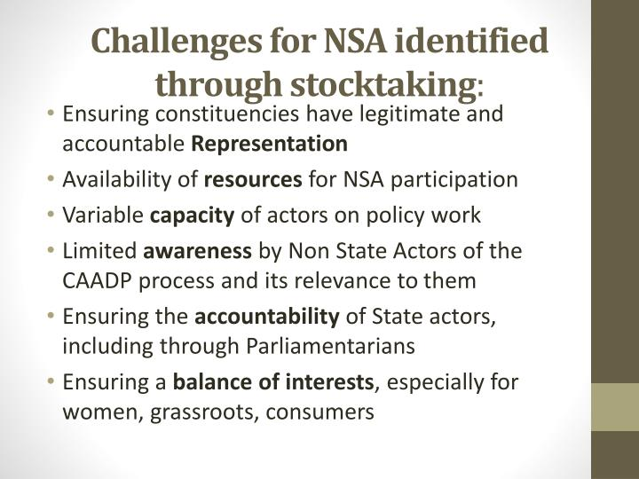Challenges for NSA identified through stocktaking