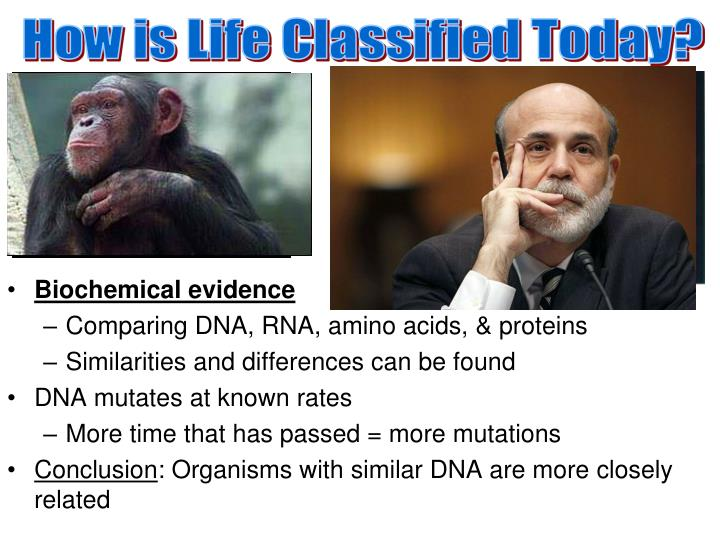 How is Life Classified Today?