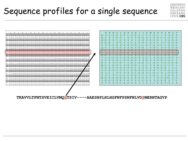 Sequence profiles for a single sequence