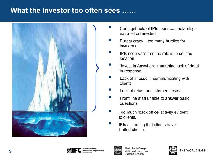 What the investor too often sees ……