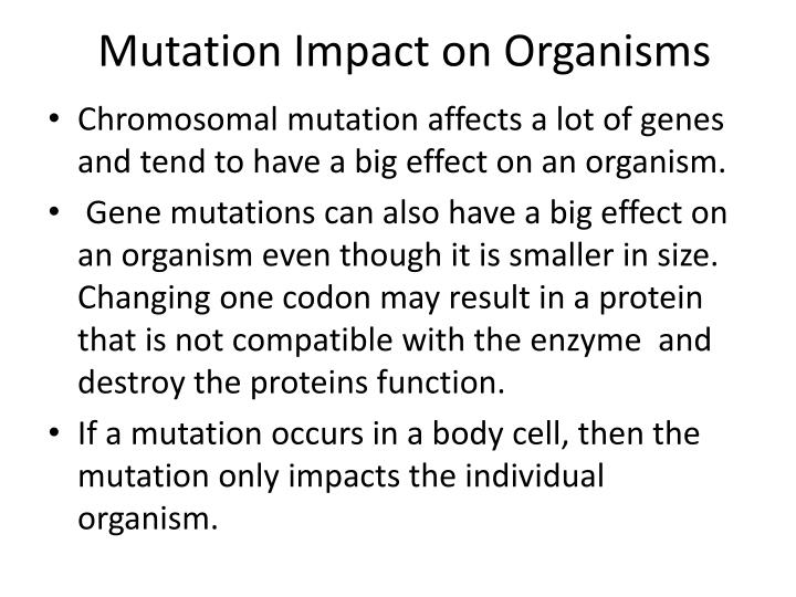Mutation Impact on Organisms