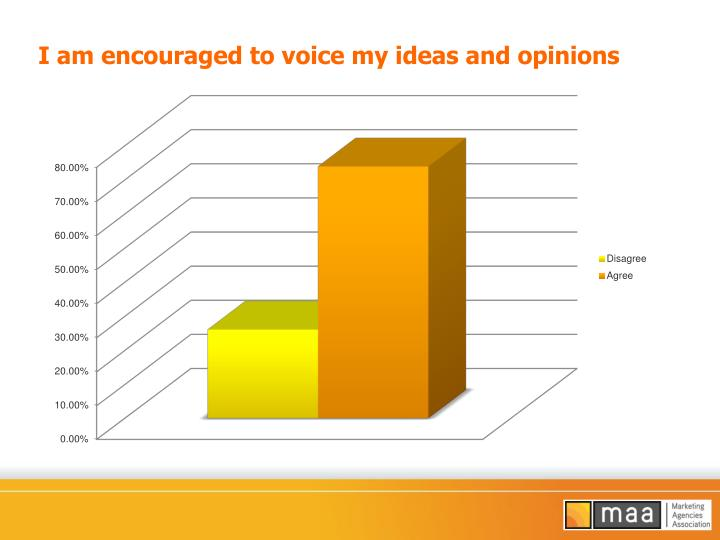 I am encouraged to voice my ideas and opinions