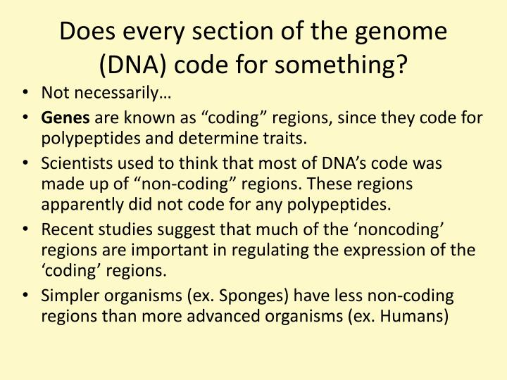 Does every section of the genome (DNA) code for something?