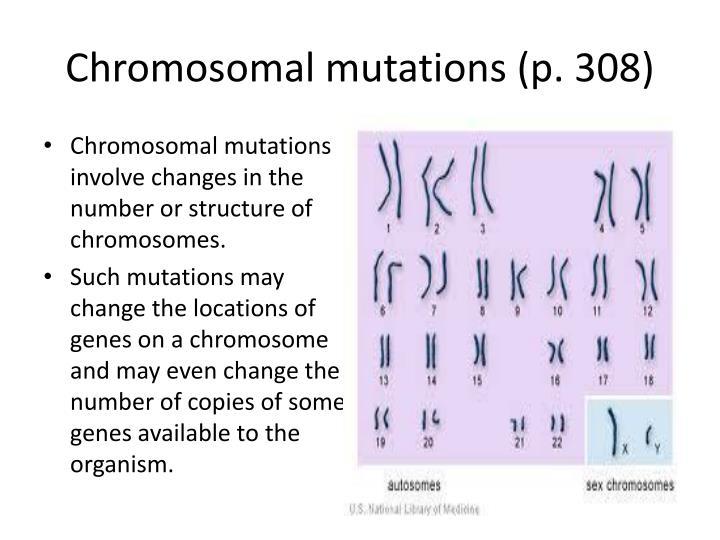 Chromosomal mutations (p. 308)