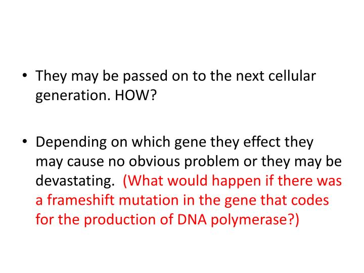 They may be passed on to the next cellular generation
