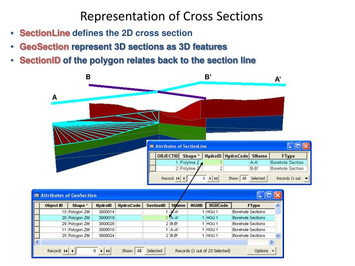 Representation of Cross Sections