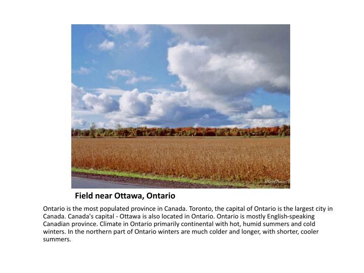 Field near Ottawa, Ontario