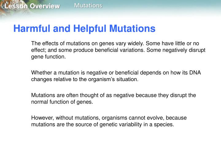 Harmful and Helpful Mutations