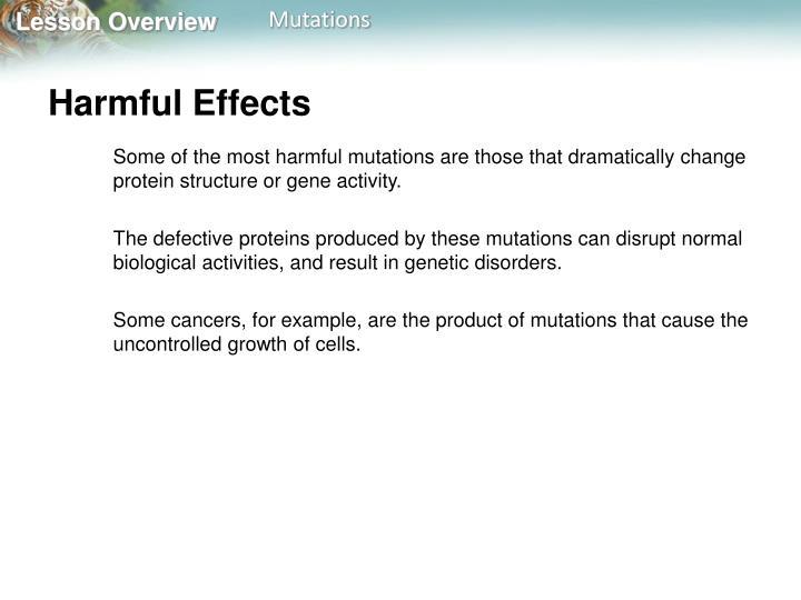 Harmful Effects