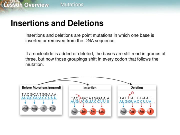 Insertions and Deletions