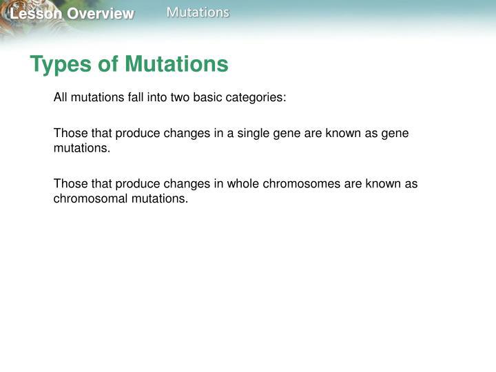 Types of mutations1