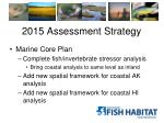 2015 assessment strategy1
