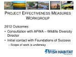 project effectiveness measures workgroup