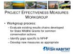 project effectiveness measures workgroup2