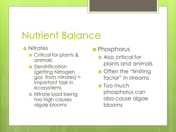 Nutrient Balance