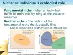 niche an individual s ecological role
