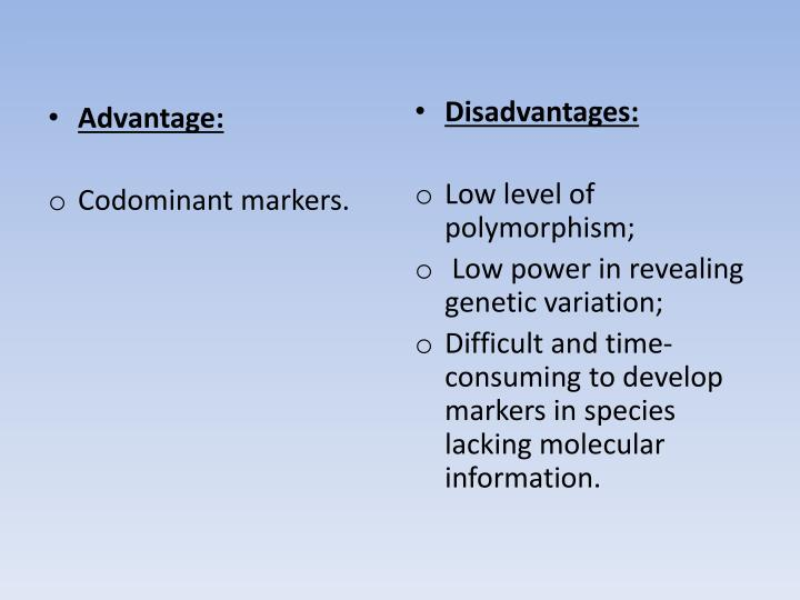 Advantage: