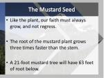 the mustard seed1