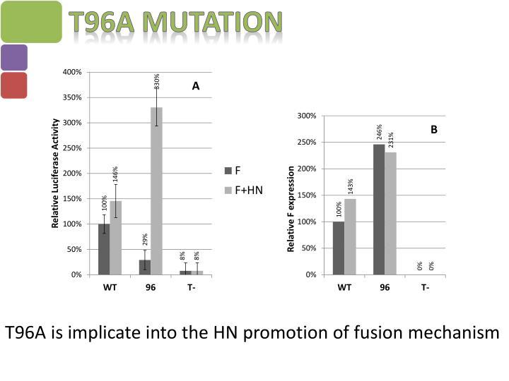 T96A Mutation
