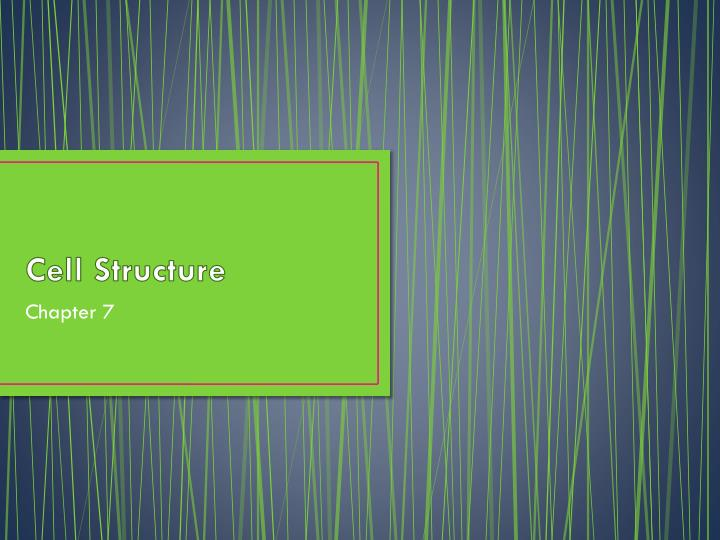 cell structure n.