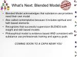 what s next blended model