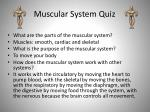 muscular system quiz