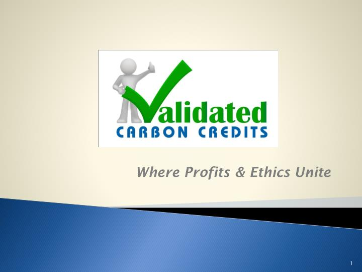validated carbon credits n.