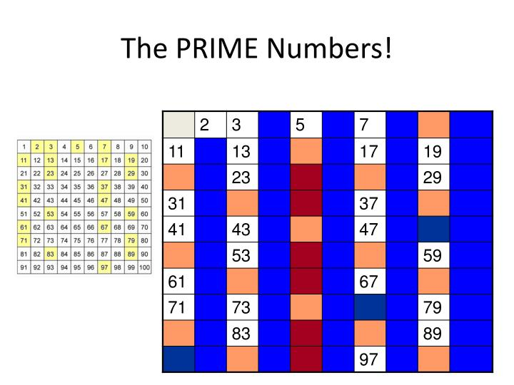 The PRIME Numbers!
