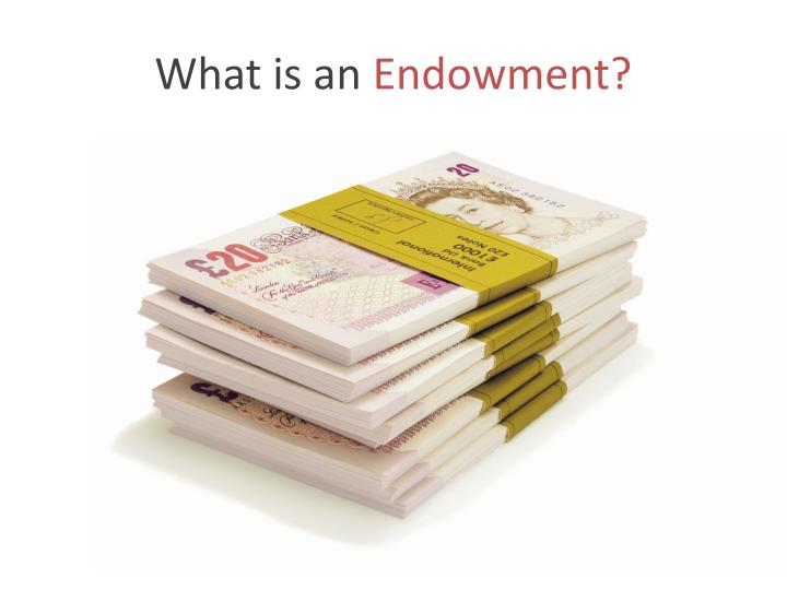What is an endowment
