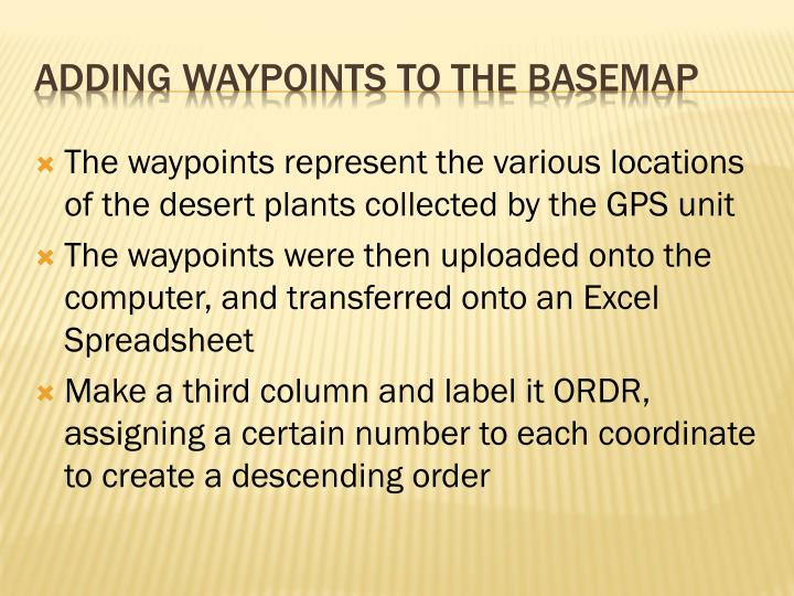 The waypoints represent the various locations of the desert plants collected by the GPS unit