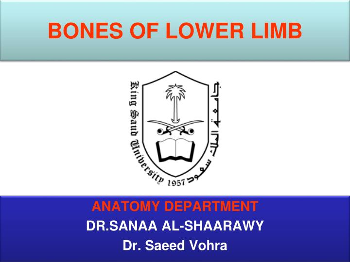 bones of lower limb