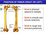 position of femur right or left