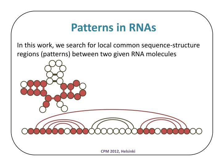 Patterns in RNAs
