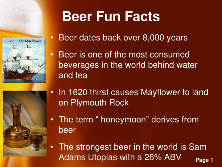 Beer fun facts