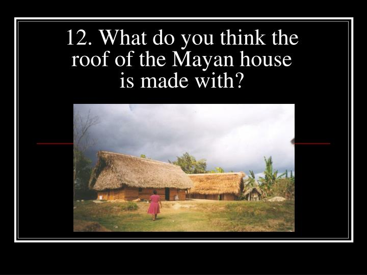 12. What do you think the roof of the Mayan house is made with?